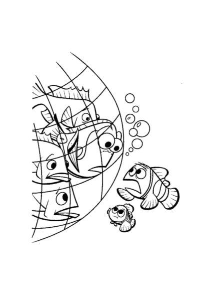 Раскраска Дори попадает в рыболовную сеть скачать или распечатать