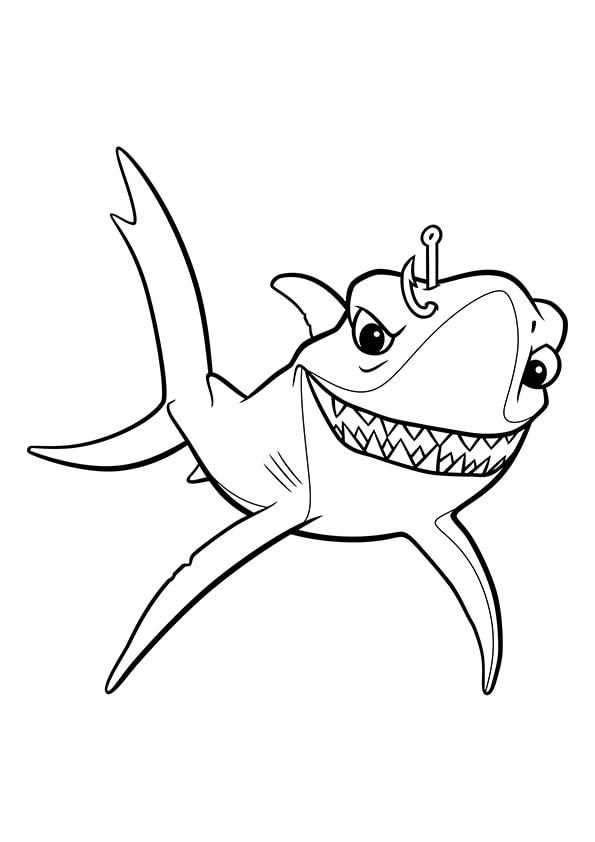 Раскраска Чернорылая акула Чавк | В поисках Немо | Чудо ...