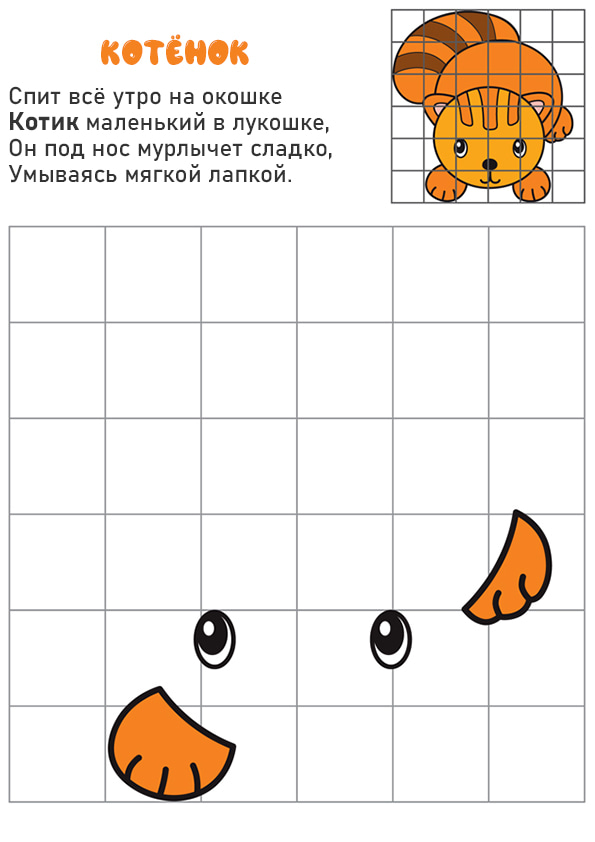 Раскраска Котёнок   Рисование по клеточкам   Чудо ребенок