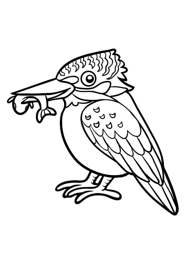 Раскраска для малышей Зимородок   Чудо ребенок