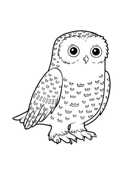 Раскраска для малышей Полярная сова | Чудо ребенок