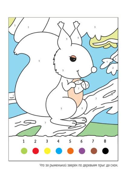 Раскраска Белочка   Раскраски по цифрам   Чудо ребенок