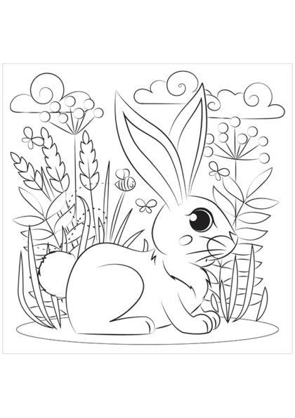 Раскраска Кролик скачать или распечатать