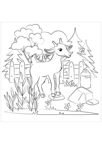 Раскраска Коза скачать или распечатать