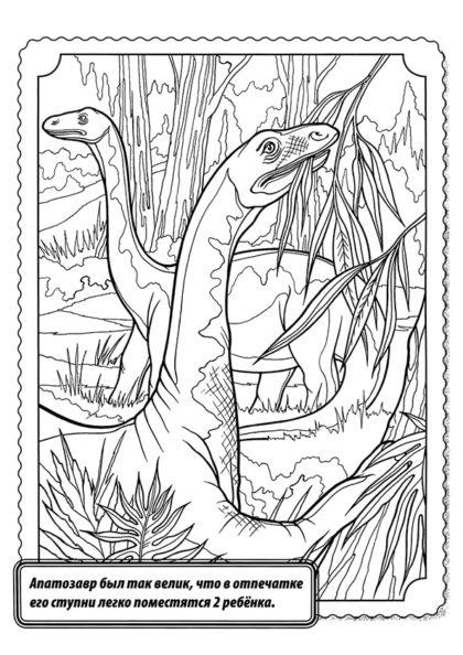 Раскраска Апатозавр скачать или распечатать