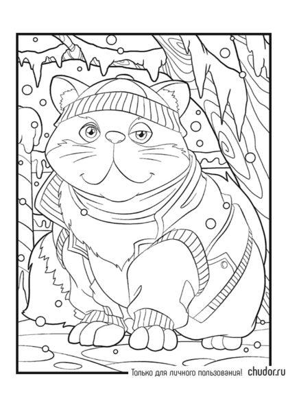 Раскраска Котик в модной толстовке скачать или распечатать