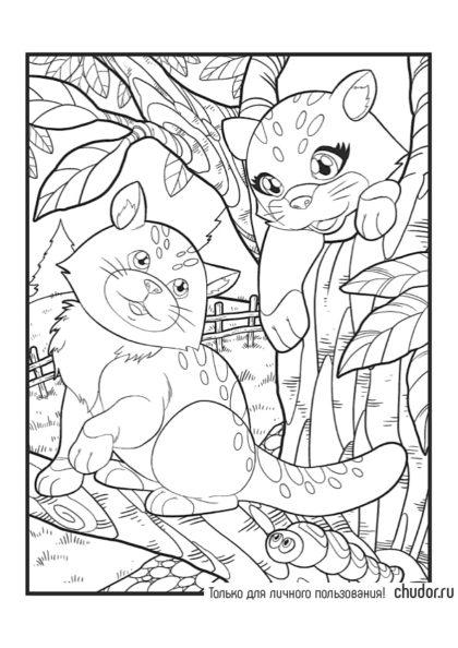 Раскраска Котики на дереве скачать или распечатать